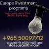 Investment programs
